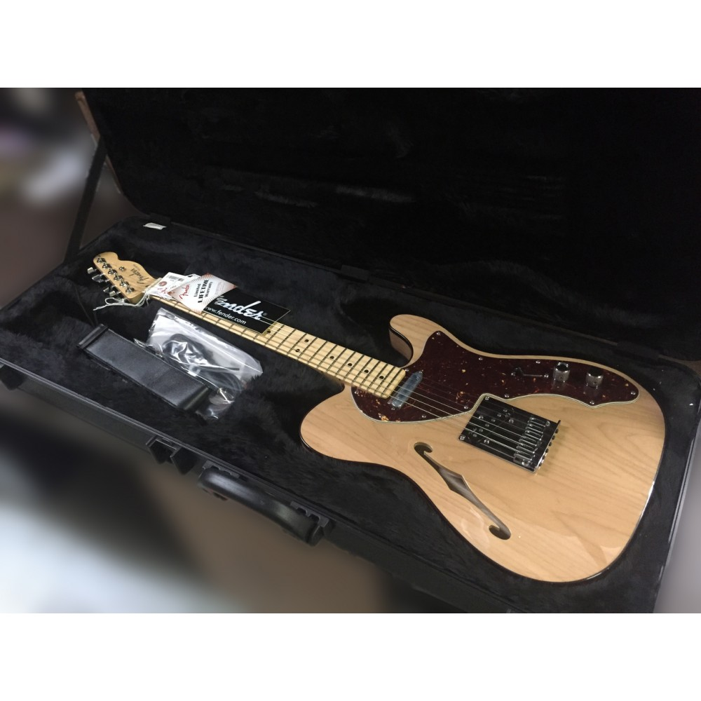 American deluxe telecaster thinline / Idlewild park pa on