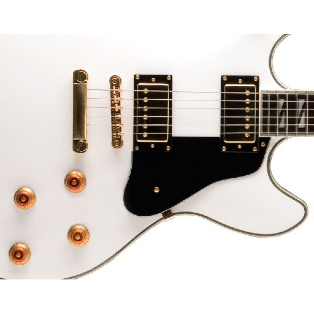 washburn hb45whk hollowbody electric guitar in white with hardcase. Black Bedroom Furniture Sets. Home Design Ideas
