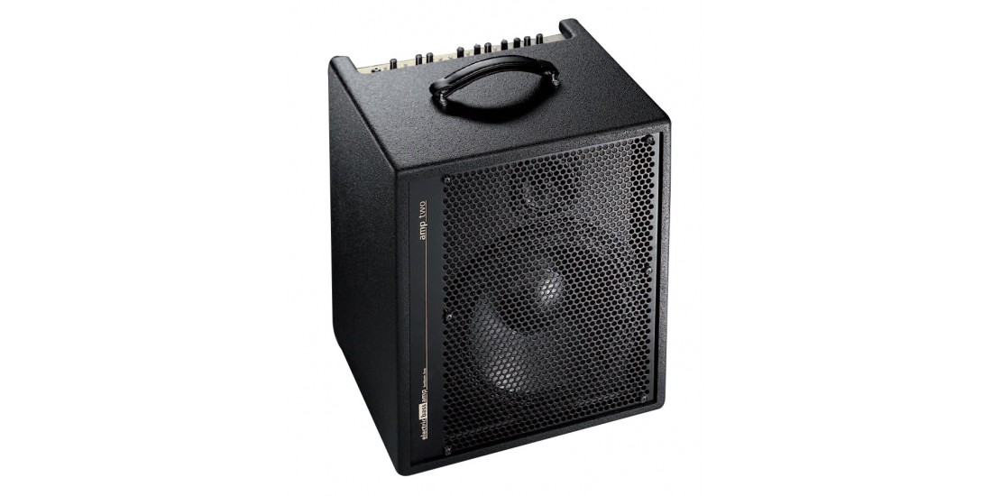 AER Amp-Two 240W Bass 1x12 Combo Amp