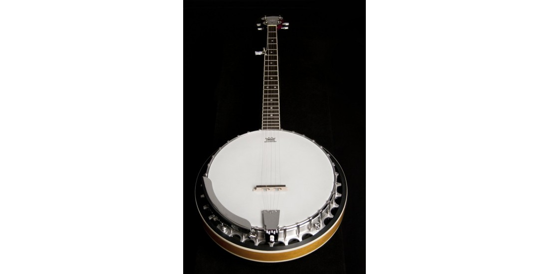 Washburn B9-WSH 5 String Banjo Cast Aluminum Tone Ring Natural