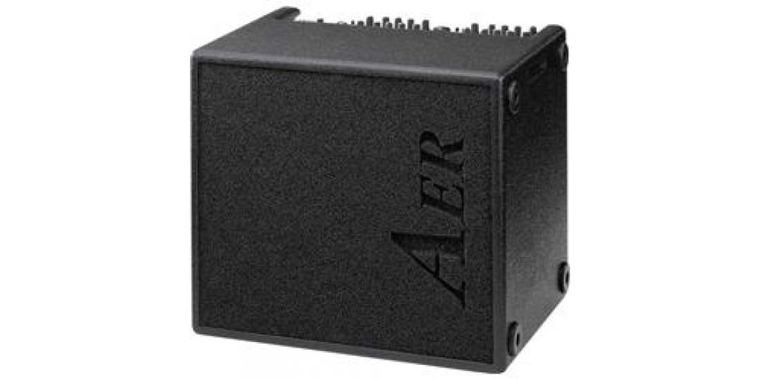 AER Domino 2A 100W 2x8 Acoustic Guitar Combo Amp Black