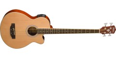 Washburn AB5K Acoustic Bass with Solid Spruce Top..