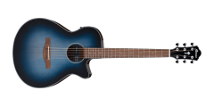 Ibanez AEG50IBH AE Series Acoustic Electric Guitar
