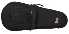 Mandolin Lightweight Case