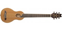 Washburn RO10RWC Rover Acoustic Guitar Cedar Top Mahogany Back and Sides In