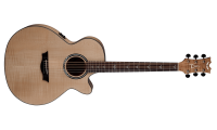Dean PE-UFM-GN Performer Ultra Acoustic Electric F..